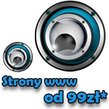 Strony www od 99* zł! Profesjonalne strony internetowe.