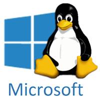 Microsoft Azure Tux
