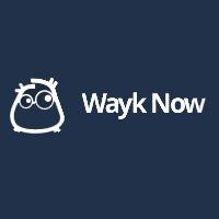 Wayk Now